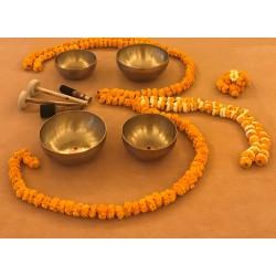 Basic Level - 4 Tibetan Singing Bowls Set - SEHF